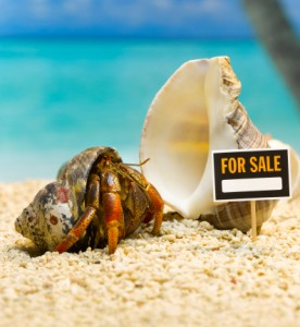 Real Estate Website Content