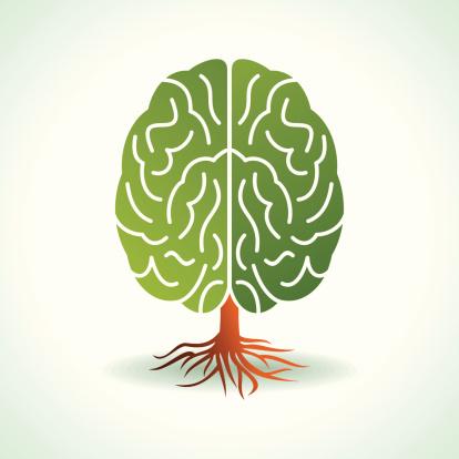 blog-brain-tree