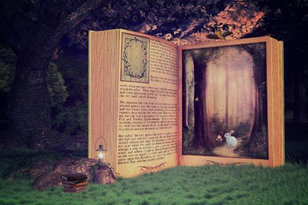 writeraccess storytellers