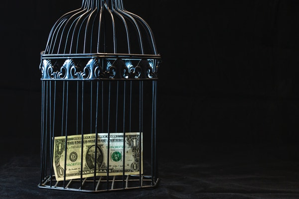 bird cage with money in it