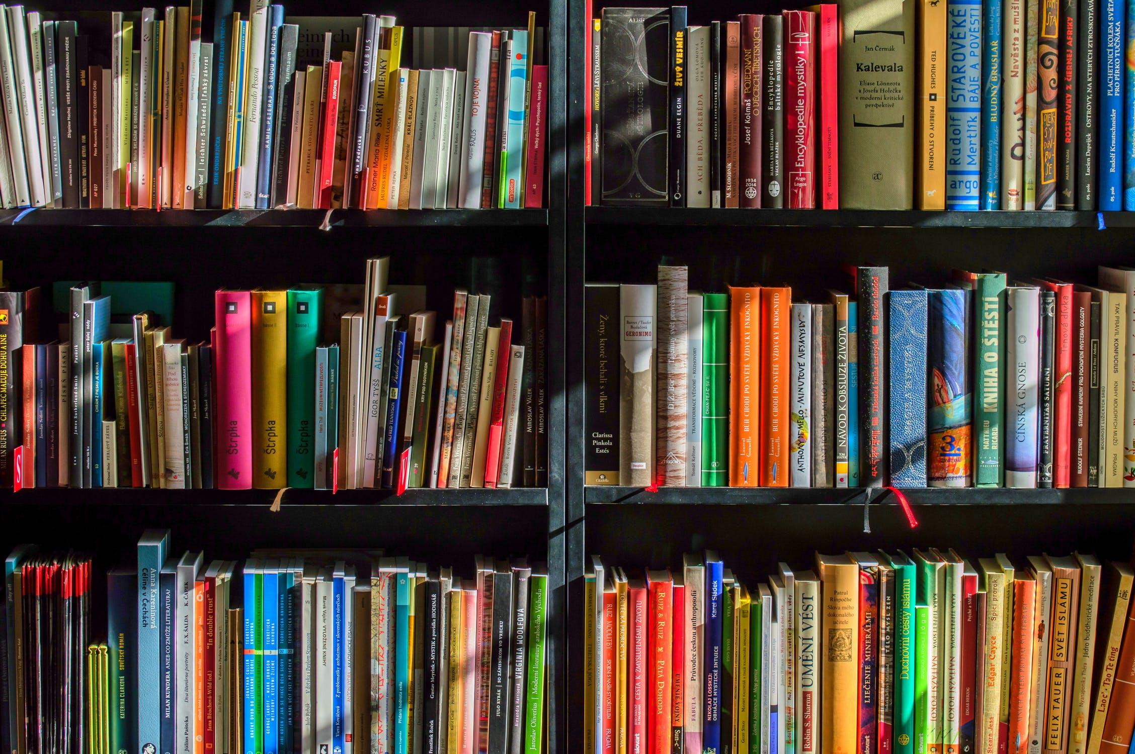 Books on a bookshelf